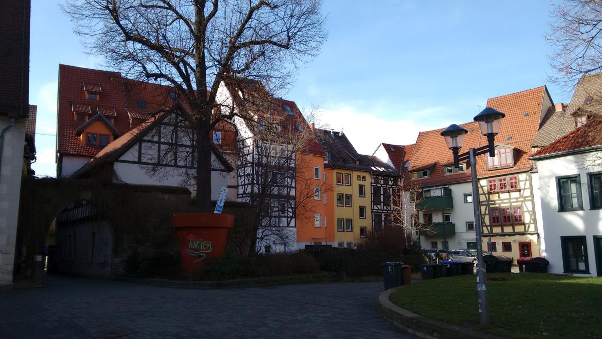 Ein Hinterhof in Erfurt mit Baum im Blumentopf