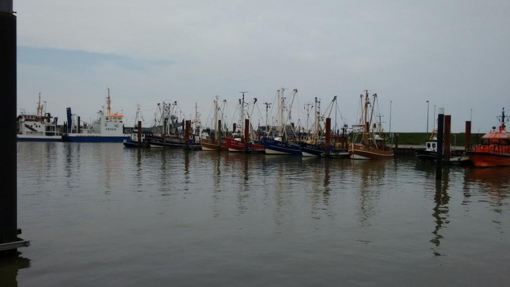 Schiffe Norddeich