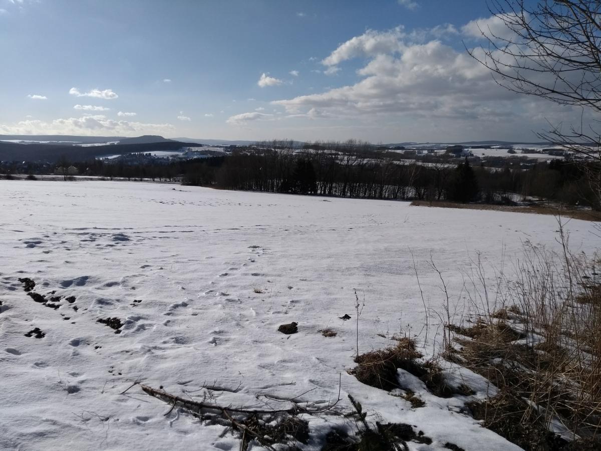 Blick vom Pöhlberg auf Annaberg, winterlich gezuckert