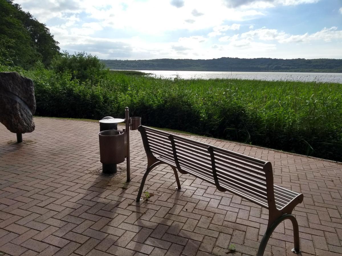 Romantische Bank am Schmachter See in Binz