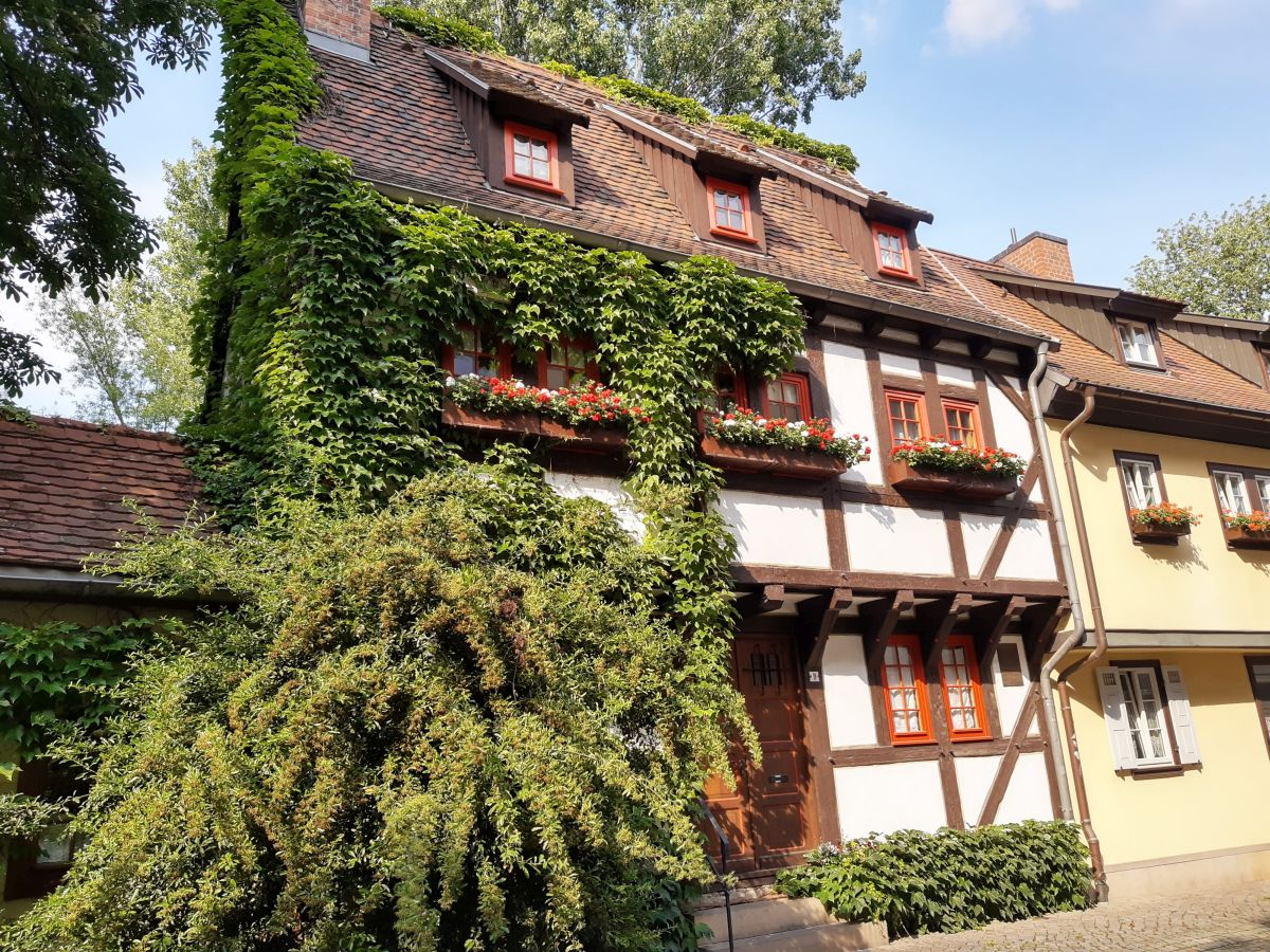 Ein altes umranktes Studentenwohnheim in Erfurt